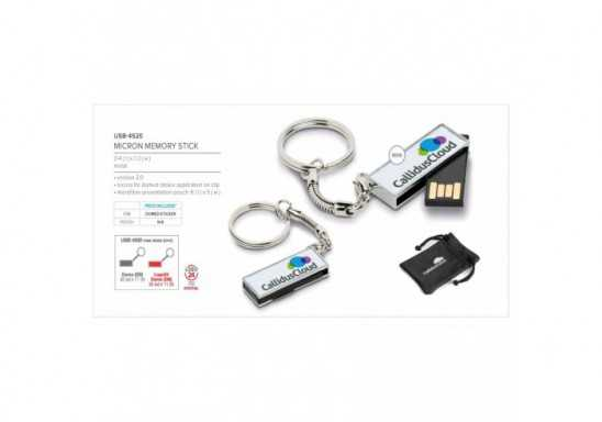 Micron Keyholder Memory Stick