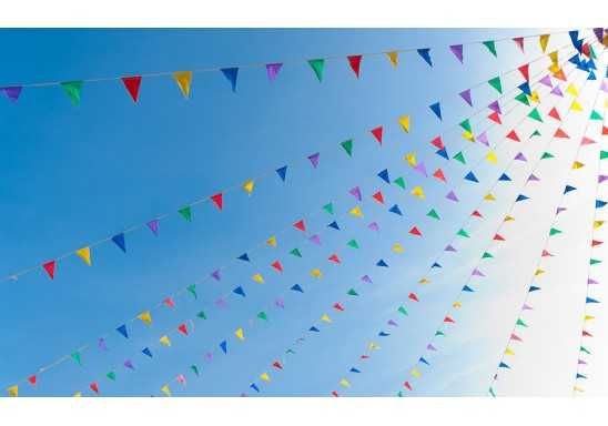 Bunting String Flags Single A4 PVC 200mm GAP