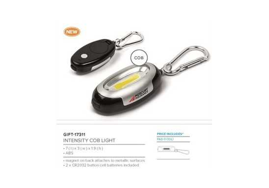Intensity Cob Light