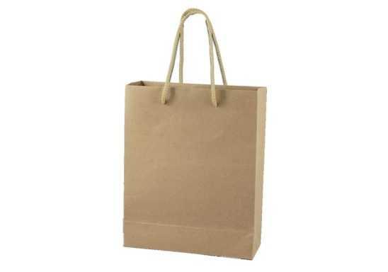 Packson Gift Bag - Kraft