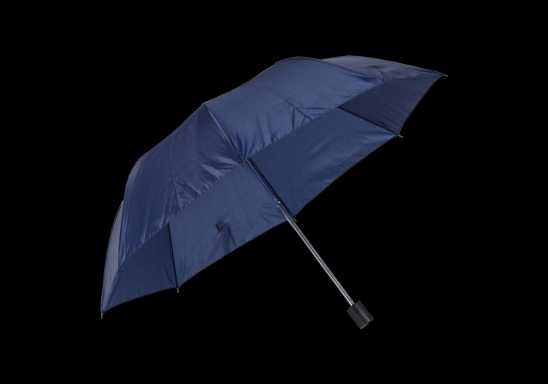 Mini Foldable Umbrella - Navy