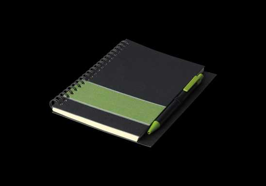 Coloured Stripe Notebook with Pen - Green