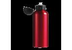 650ml Aluminium Water Bottle with Black Cap - Red