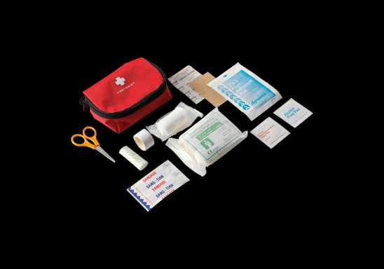 16 Piece First Aid Kit